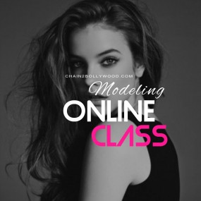 Online Professional Modeling Class